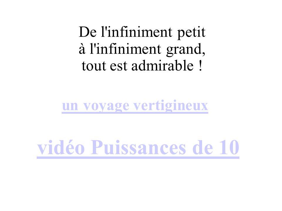 vidéo Puissances de 10 De l infiniment petit à l infiniment grand,
