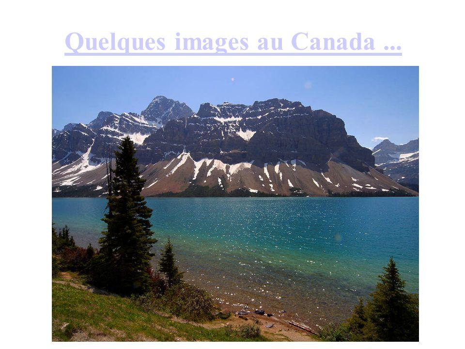 Quelques images au Canada ...