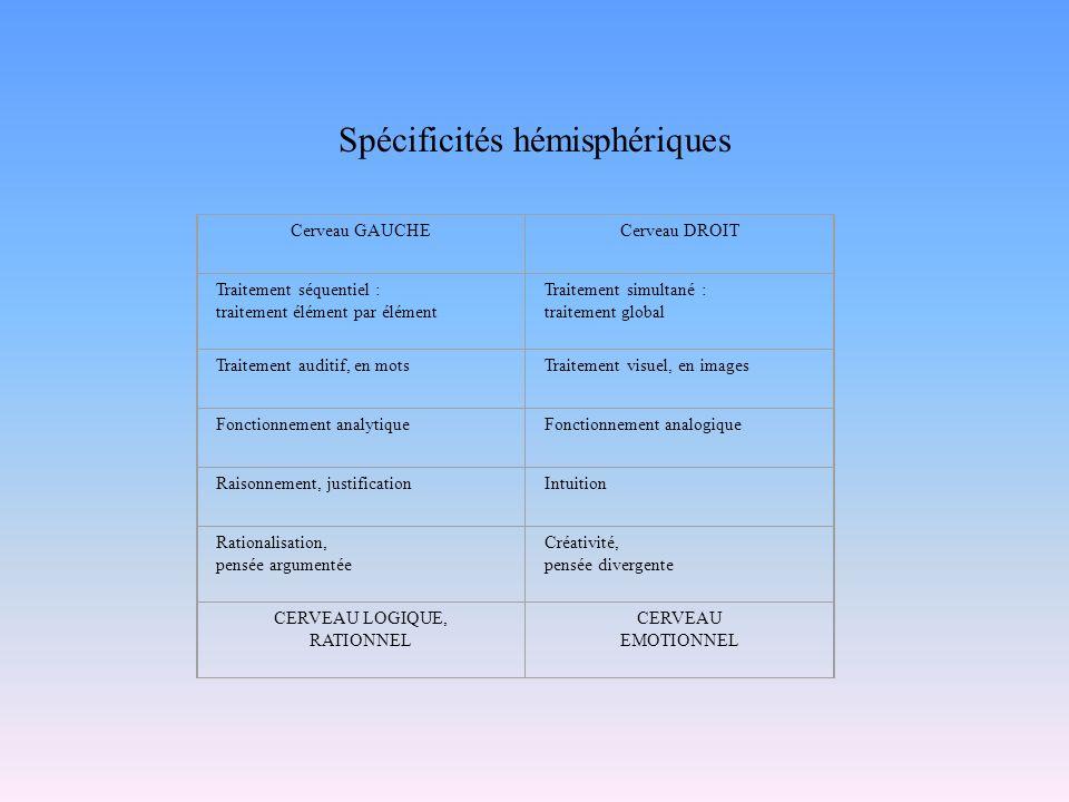 Spécificités hémisphériques
