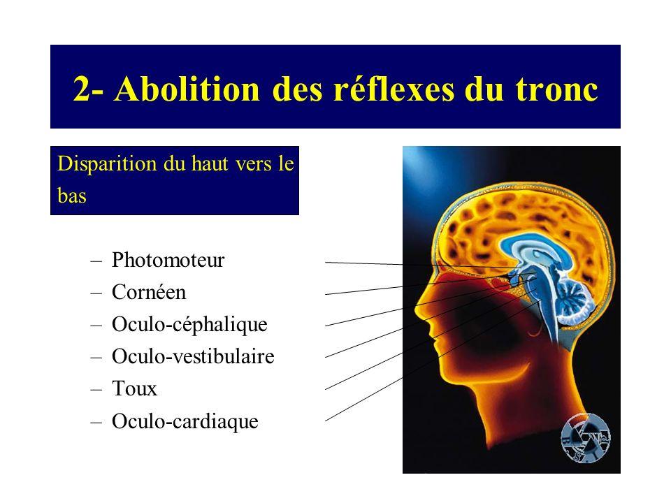 2- Abolition des réflexes du tronc