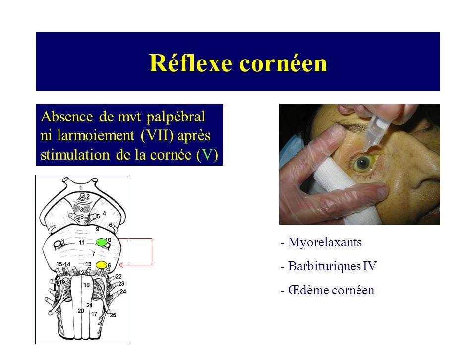 Réflexe cornéen Absence de mvt palpébral ni larmoiement (VII) après stimulation de la cornée (V) Myorelaxants.