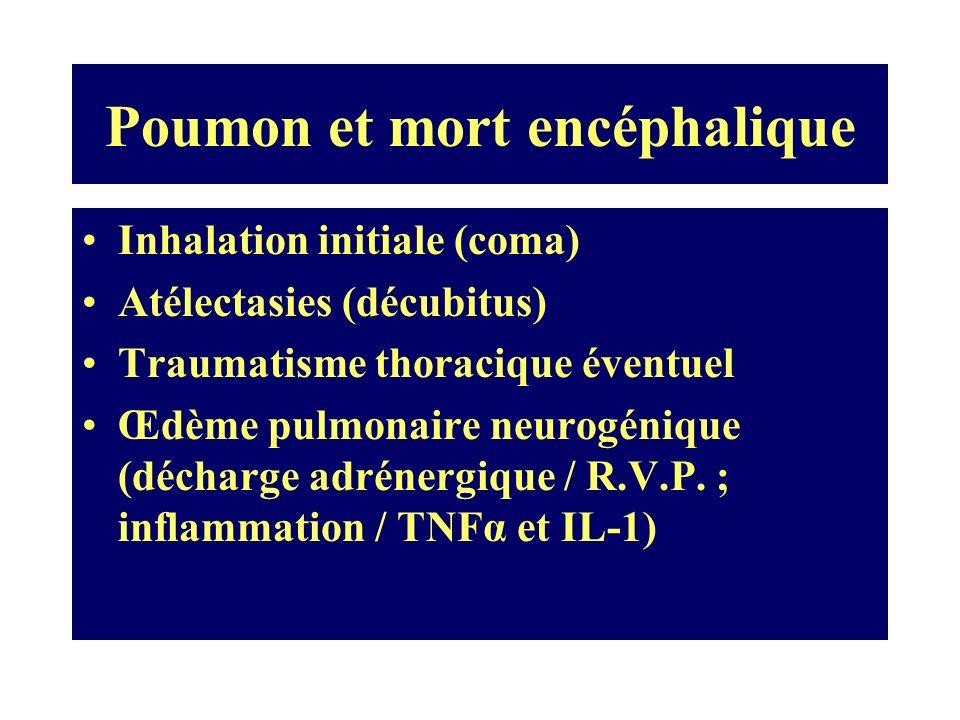 Poumon et mort encéphalique