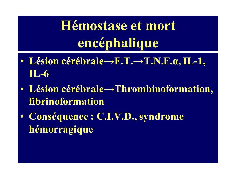 Hémostase et mort encéphalique