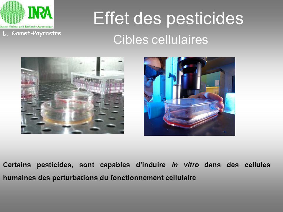 Effet des pesticides Cibles cellulaires