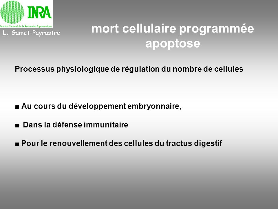 mort cellulaire programmée apoptose