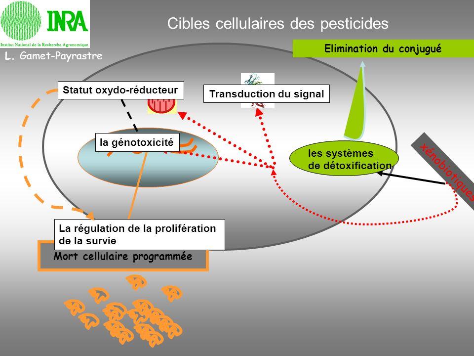 Cibles cellulaires des pesticides