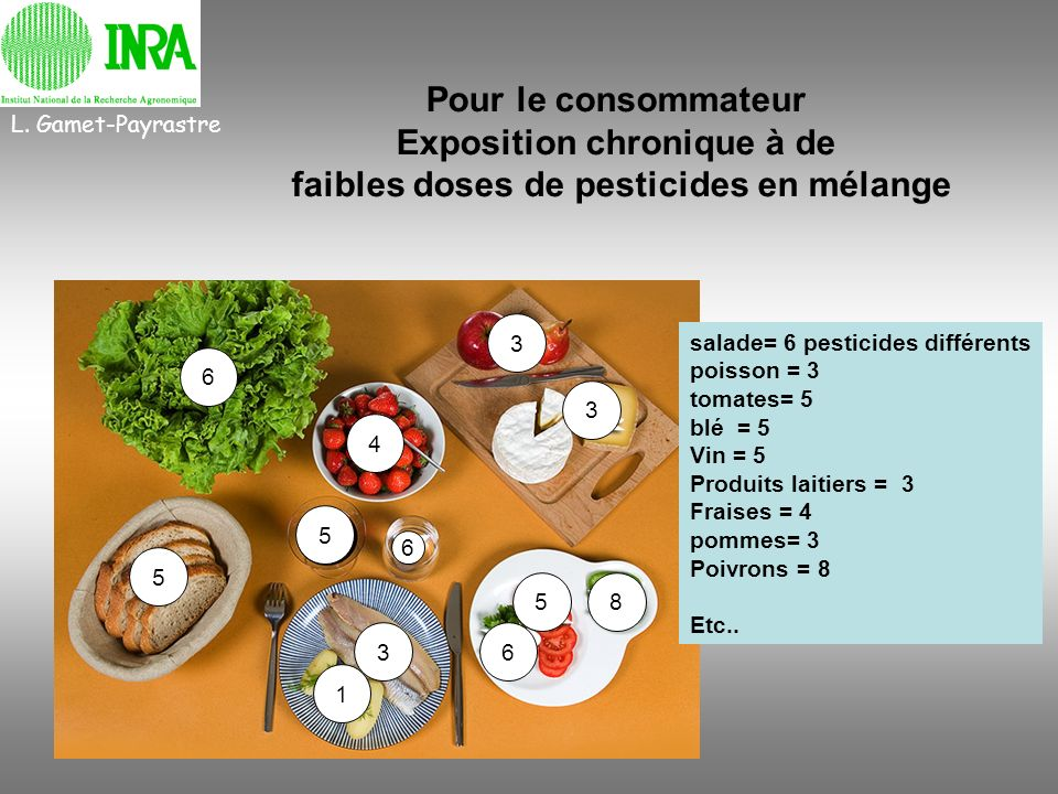 Exposition chronique à de faibles doses de pesticides en mélange
