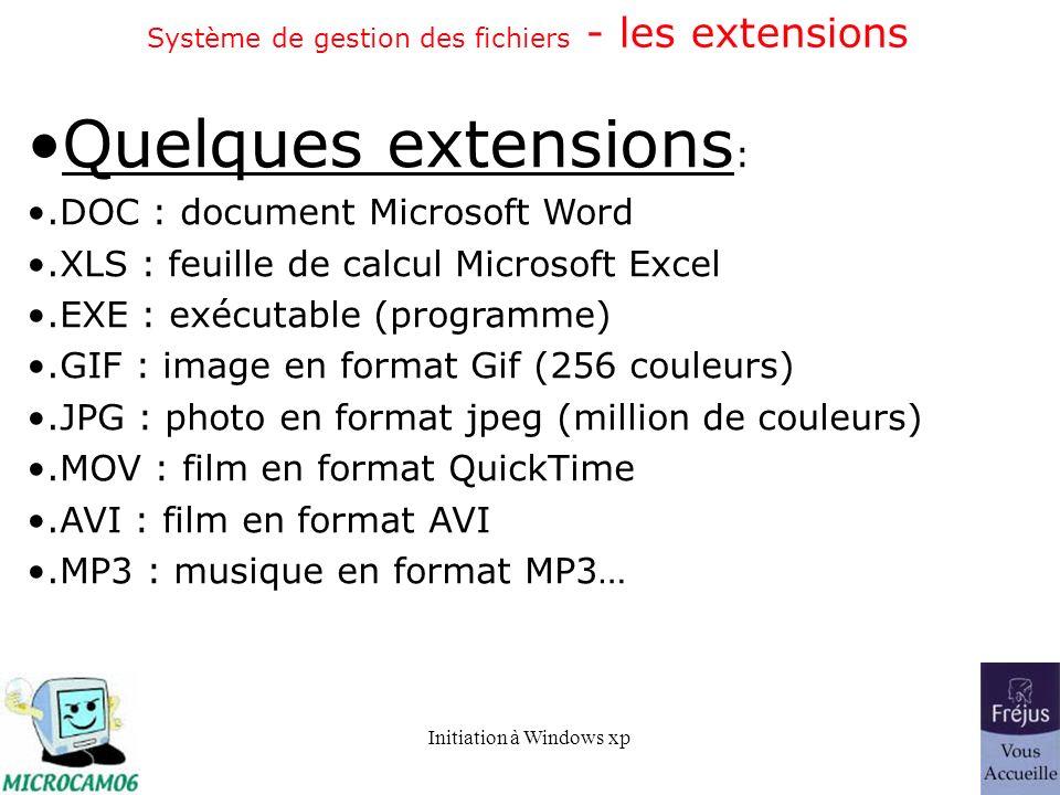 Système de gestion des fichiers - les extensions