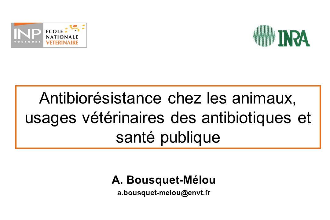 A. Bousquet-Mélou a.bousquet-melou@envt.fr
