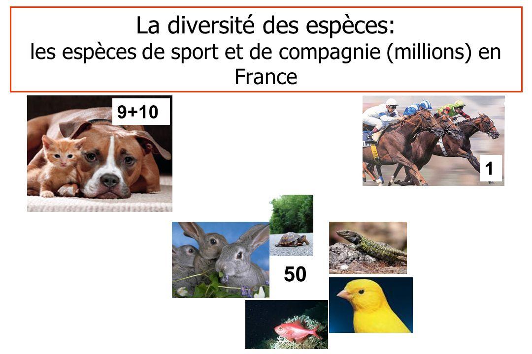 La diversité des espèces: les espèces de sport et de compagnie (millions) en France