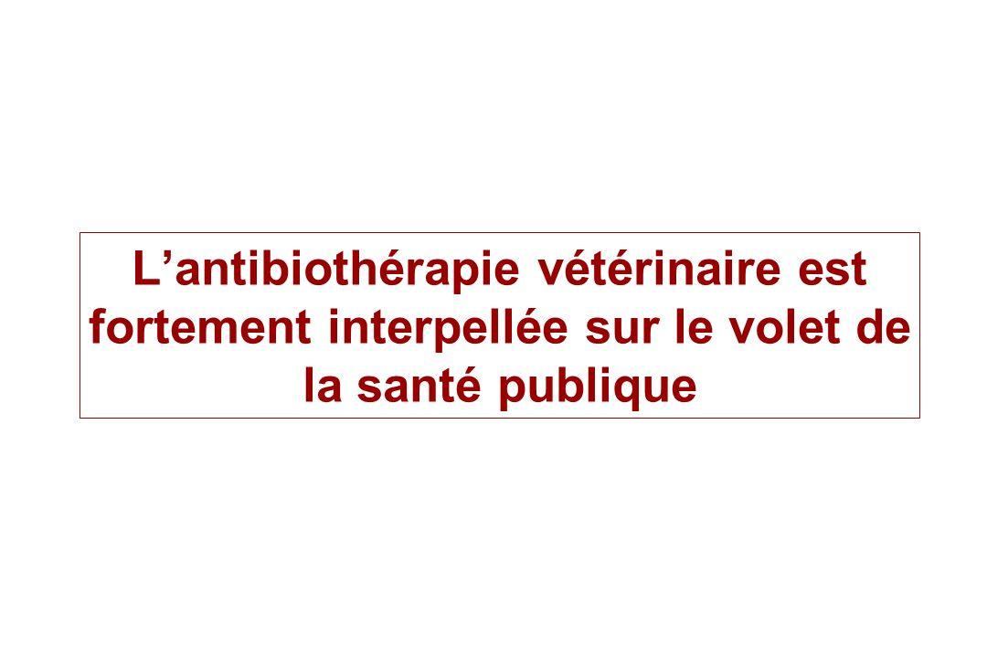 L'antibiothérapie vétérinaire est fortement interpellée sur le volet de la santé publique