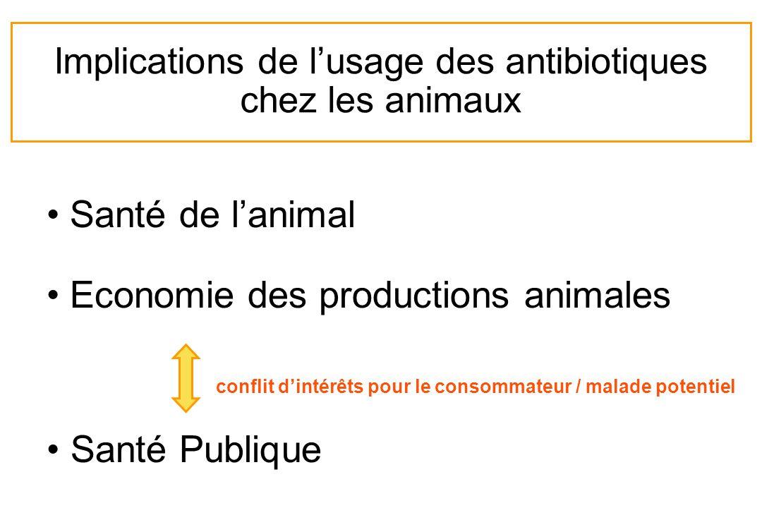 Implications de l'usage des antibiotiques chez les animaux