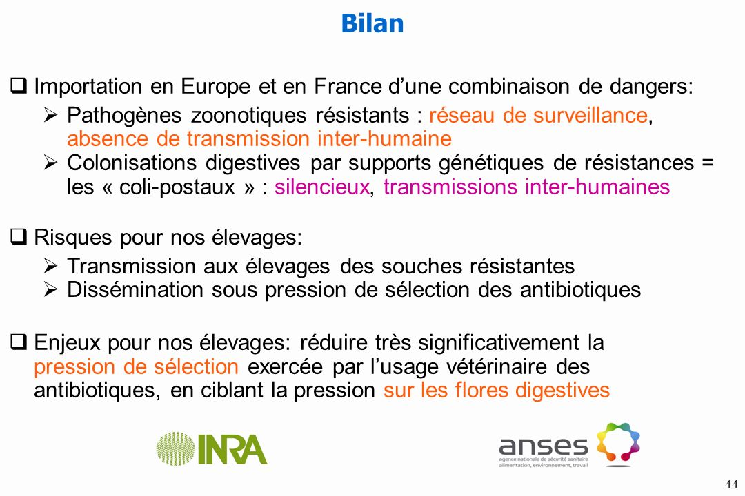 Bilan Importation en Europe et en France d'une combinaison de dangers: