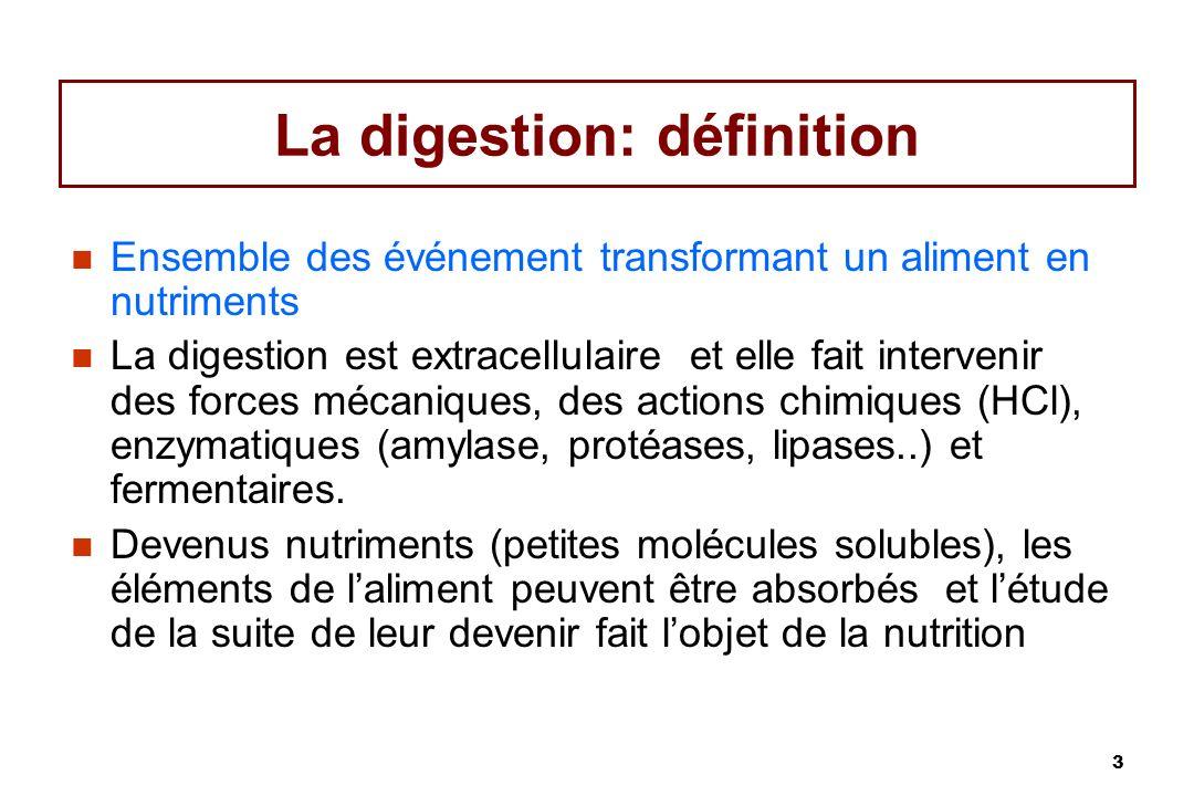 La digestion: définition
