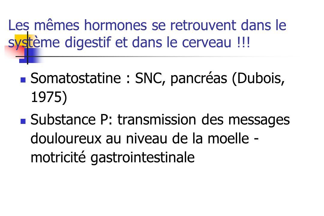 Les mêmes hormones se retrouvent dans le système digestif et dans le cerveau !!!