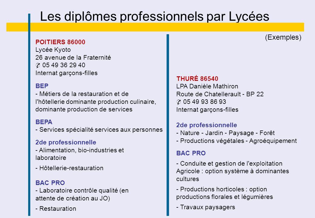 Les diplômes professionnels par Lycées