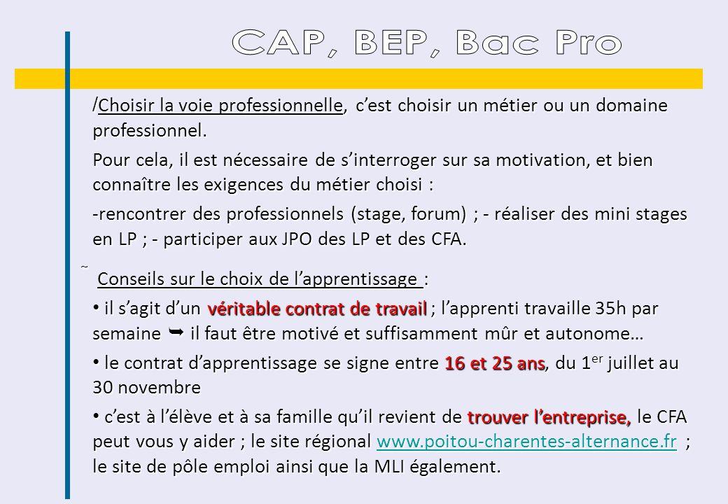 CAP, BEP, Bac Pro Choisir la voie professionnelle, c'est choisir un métier ou un domaine professionnel.