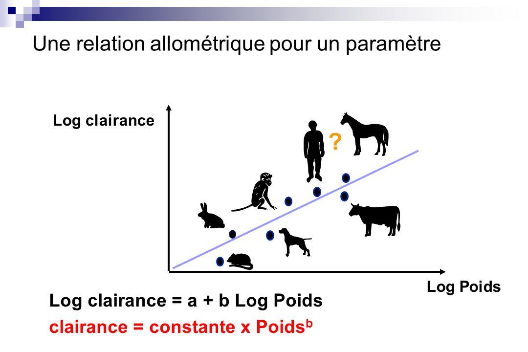 Une relation allométrique pour un paramètre