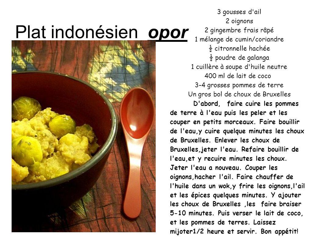 Plat indonésien opor 3 gousses d ail 2 oignons 2 gingembre frais râpé