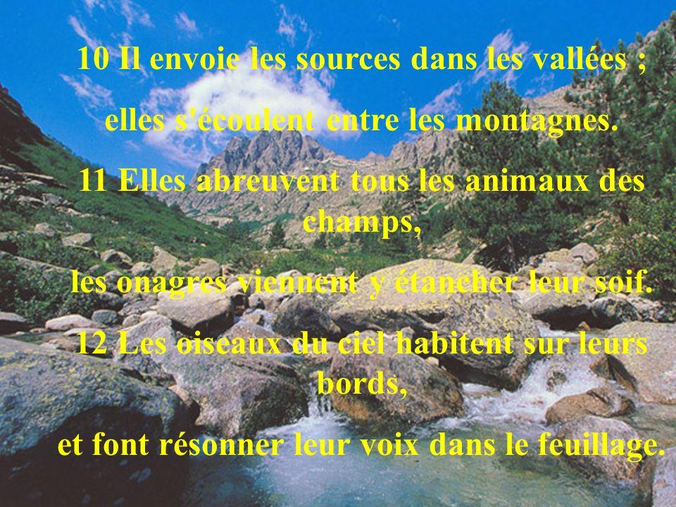 10 Il envoie les sources dans les vallées ;