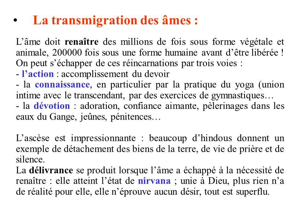La transmigration des âmes :