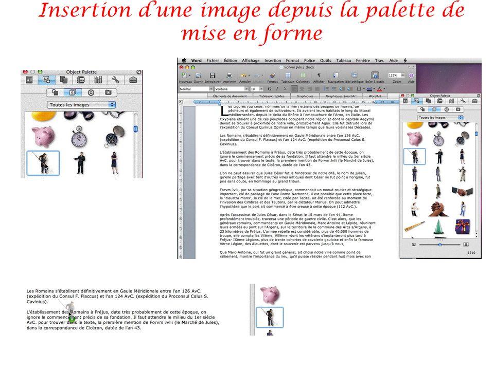 Insertion d'une image depuis la palette de mise en forme