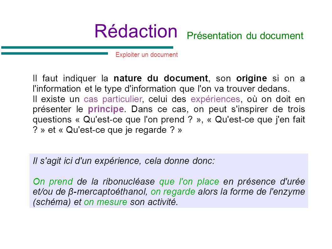 Rédaction Présentation du document