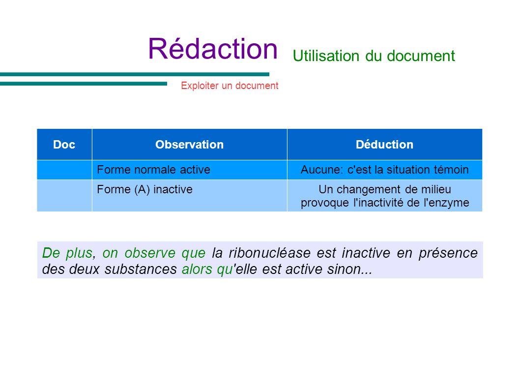 Rédaction Utilisation du document