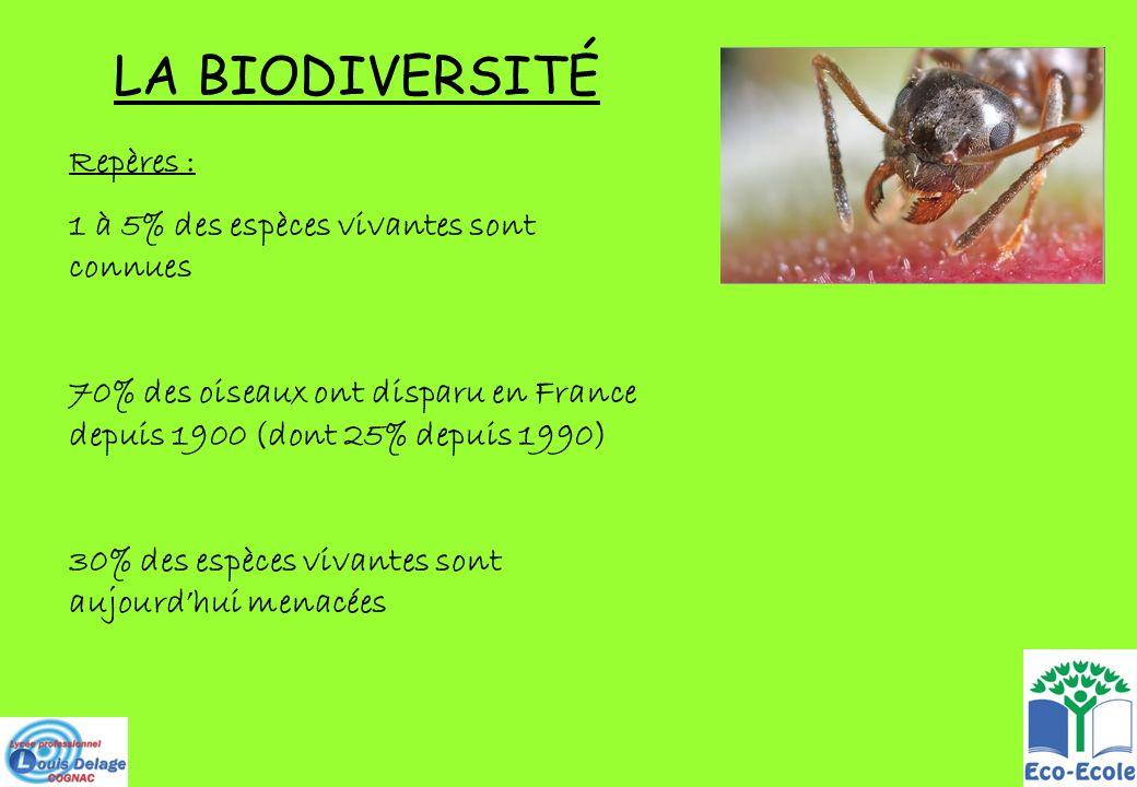 LA BIODIVERSITÉ Repères : 1 à 5% des espèces vivantes sont connues