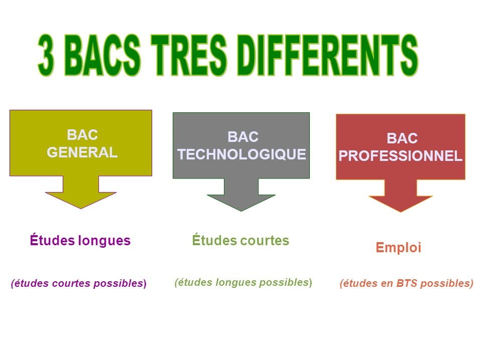 3 BACS TRES DIFFERENTS BAC BAC BAC GENERAL TECHNOLOGIQUE PROFESSIONNEL