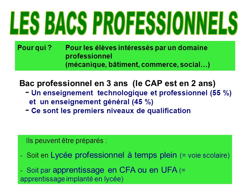 LES BACS PROFESSIONNELS