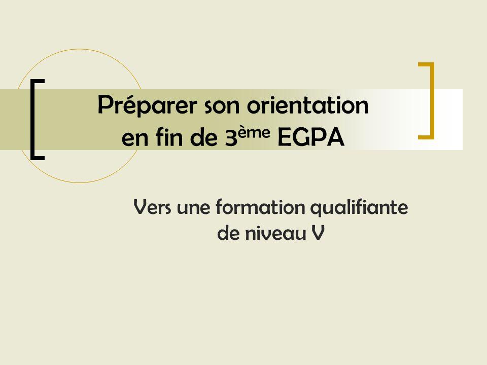 Préparer son orientation en fin de 3ème EGPA