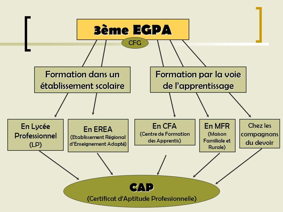 3ème EGPA CAP Formation dans un établissement scolaire