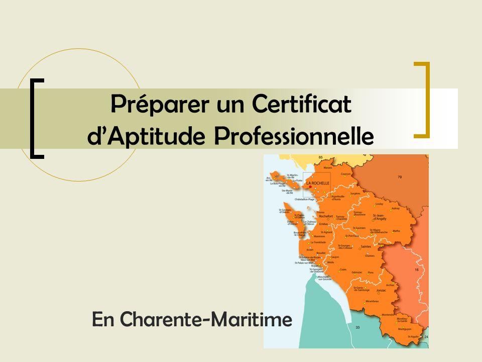 Préparer un Certificat d'Aptitude Professionnelle