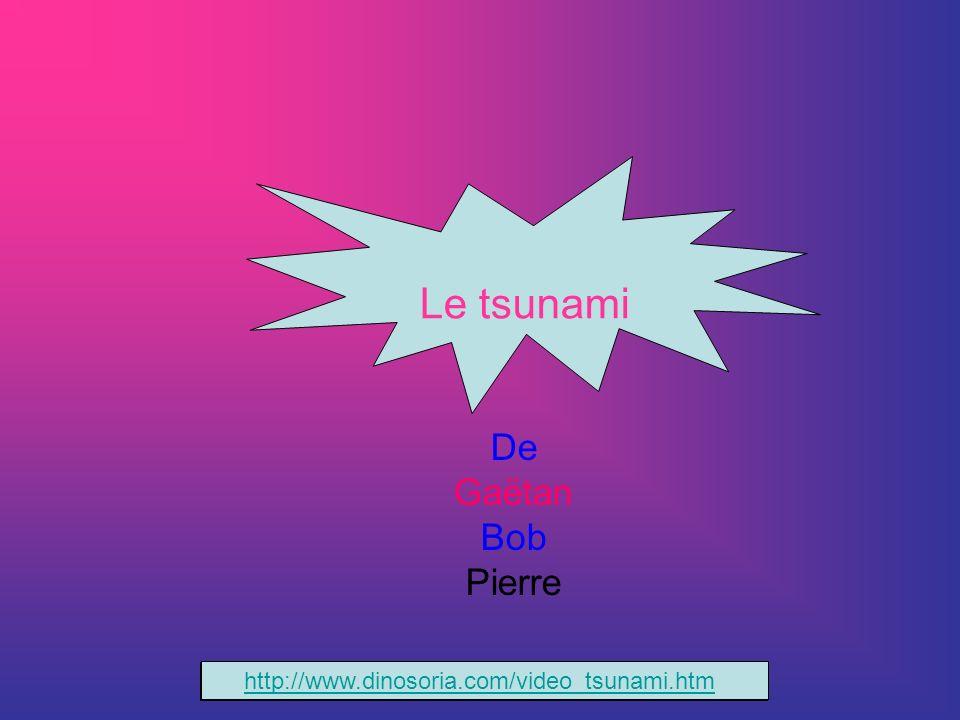 Le tsunami De Gaëtan Bob Pierre