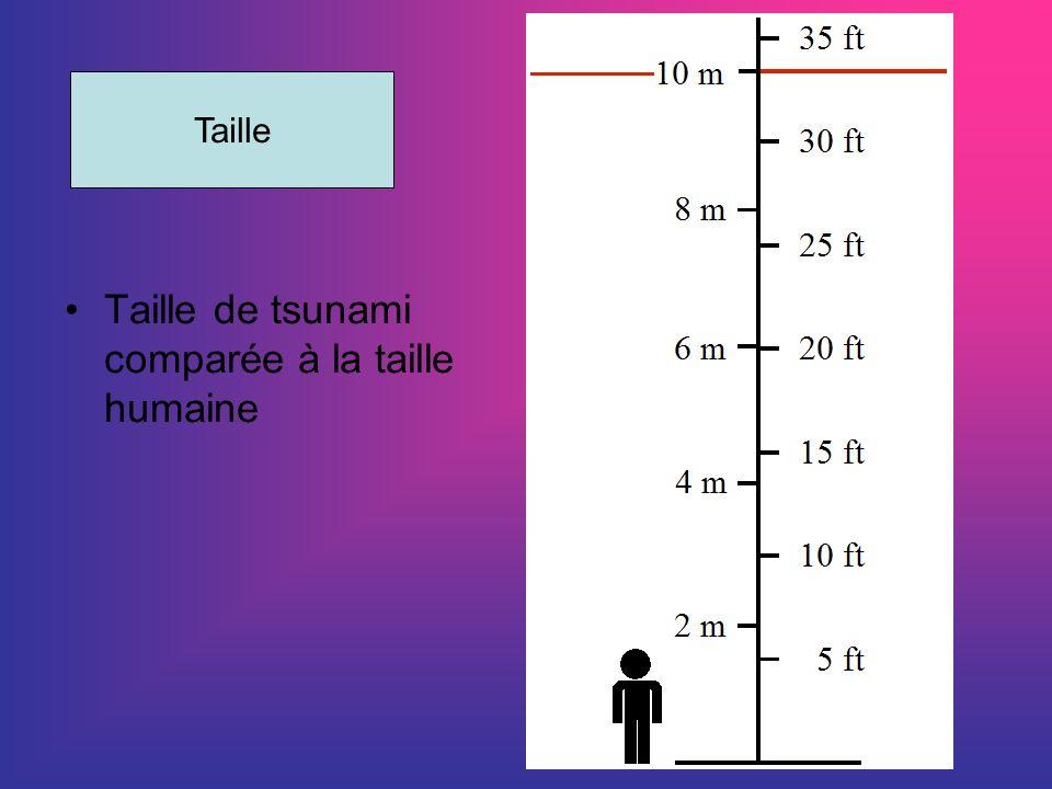 Taille de tsunami comparée à la taille humaine