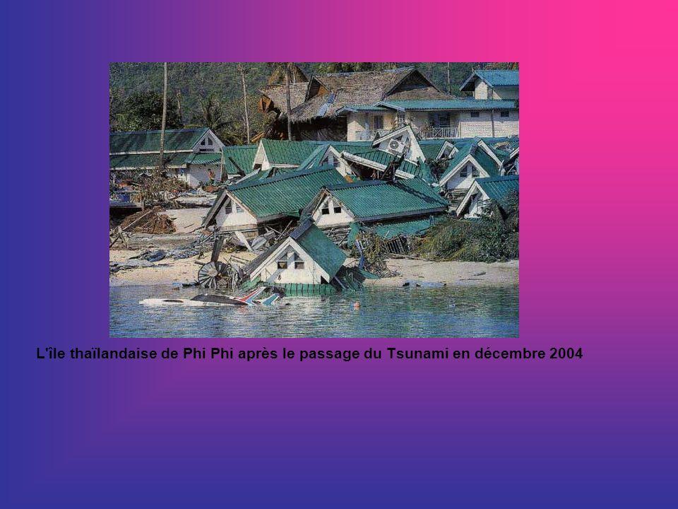 L île thaïlandaise de Phi Phi après le passage du Tsunami en décembre 2004