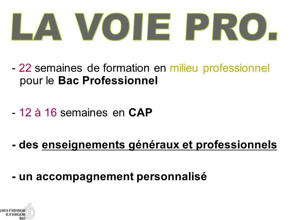 LA VOIE PRO.- 22 semaines de formation en milieu professionnel pour le Bac Professionnel. - 12 à 16 semaines en CAP.
