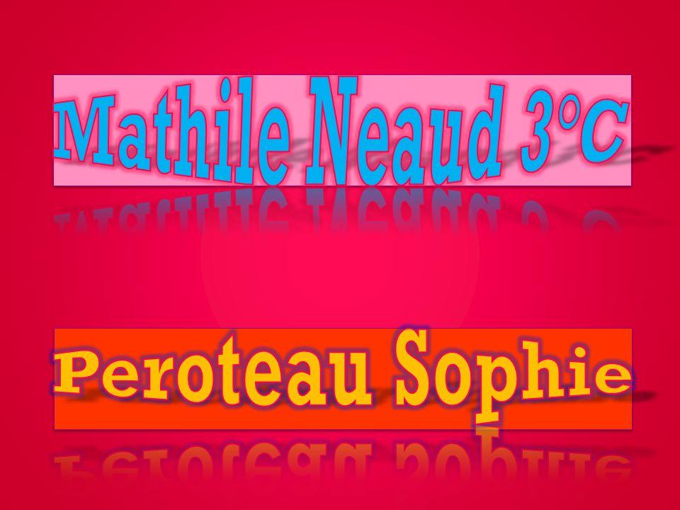 Mathile Neaud 3°C Peroteau Sophie