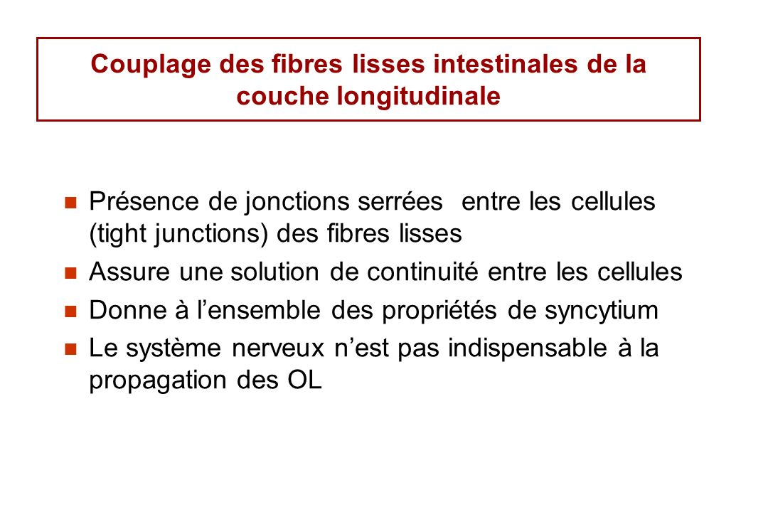 Couplage des fibres lisses intestinales de la couche longitudinale