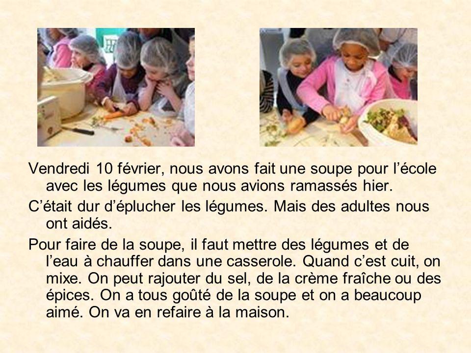Vendredi 10 février, nous avons fait une soupe pour l'école avec les légumes que nous avions ramassés hier.