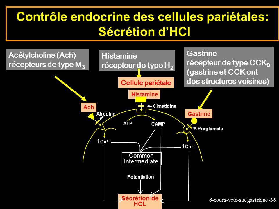 Contrôle endocrine des cellules pariétales: Sécrétion d'HCl