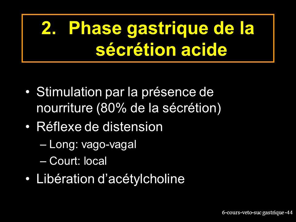Phase gastrique de la sécrétion acide