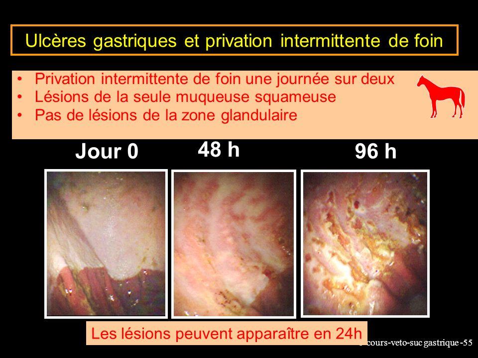 Ulcères gastriques et privation intermittente de foin