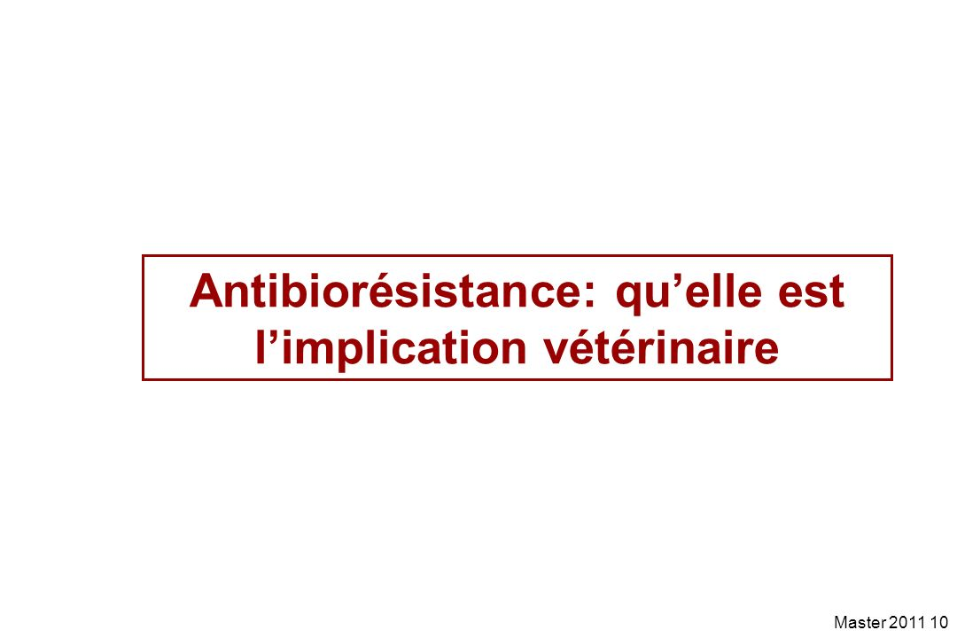 Antibiorésistance: qu'elle est l'implication vétérinaire