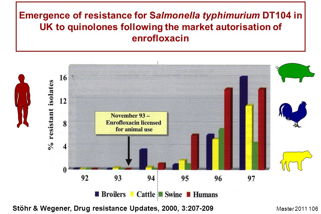 Emergence of resistance for Salmonella typhimurium DT104 in UK to quinolones following the market autorisation of enrofloxacin