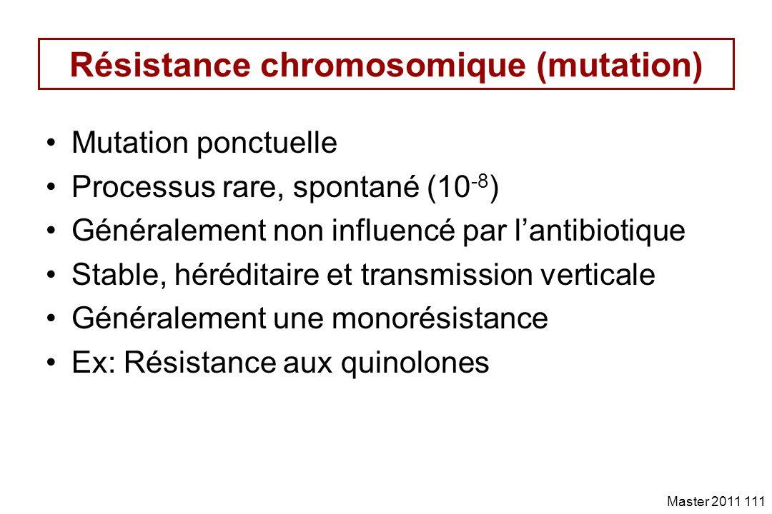 Résistance chromosomique (mutation)