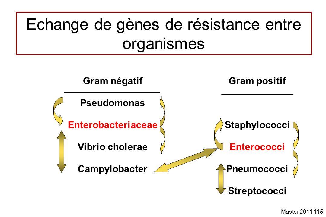 Echange de gènes de résistance entre organismes