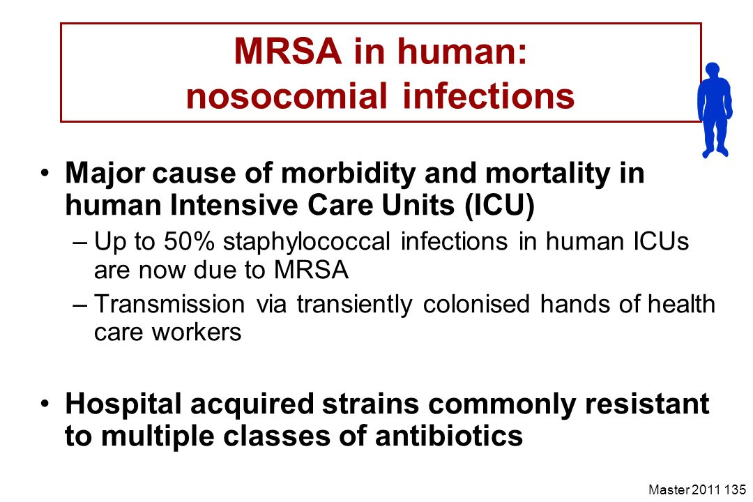 MRSA in human: nosocomial infections