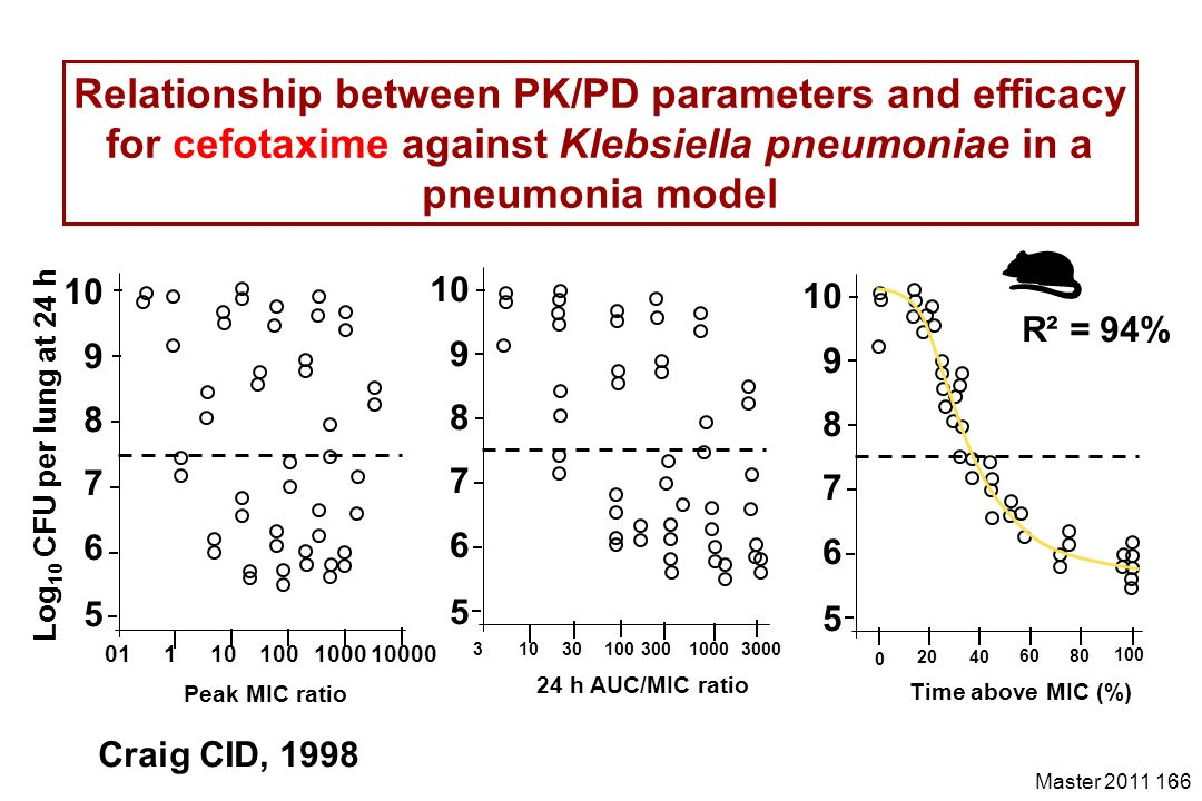 Relationship between PK/PD parameters and efficacy for cefotaxime against Klebsiella pneumoniae in a pneumonia model